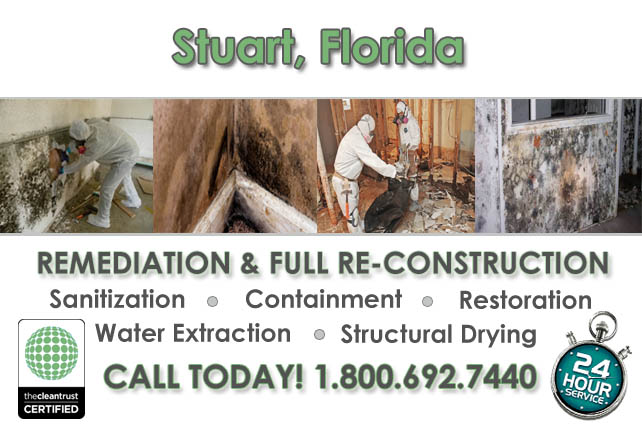 stuart fl restoration services mold remediation